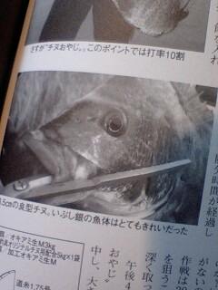 「山陰の釣り」誌2月号