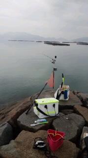 瀬戸内海でチヌ釣り